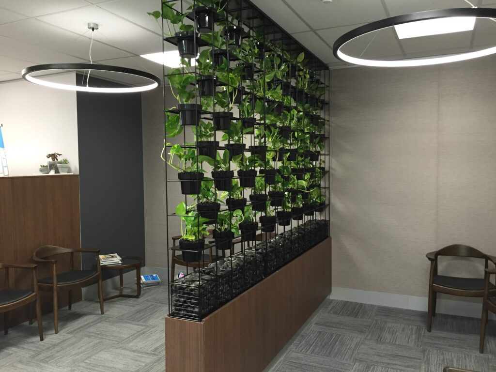 Green Feature Plant Wall