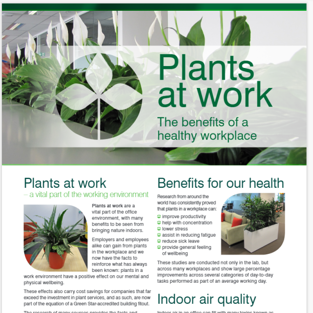 Plants At Work - The Benefits of a Healthy Workplace