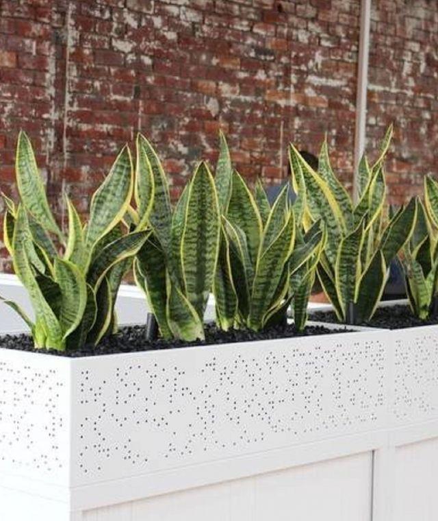 Planter Units