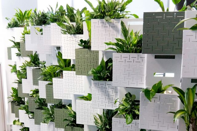 Our top 5 plantscaping designs for reception areas