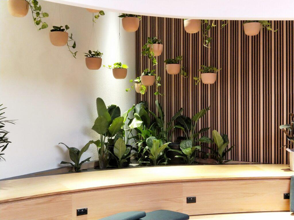 corner arrangement hanging pots and planters