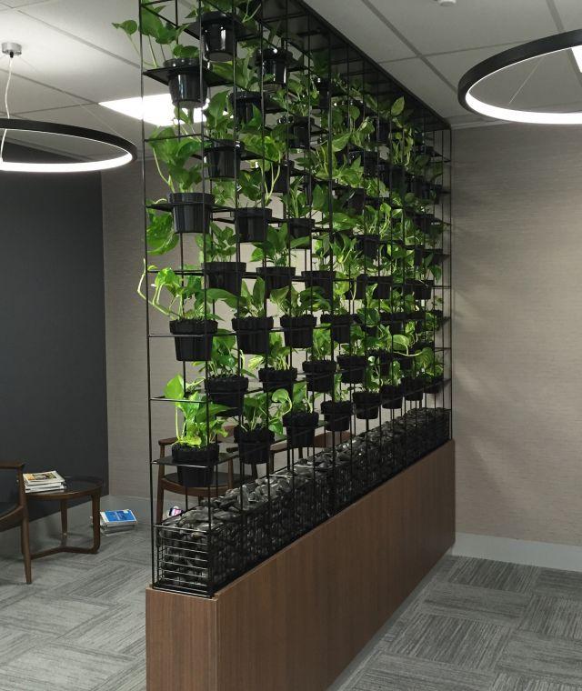 Grid Frame Green Walls