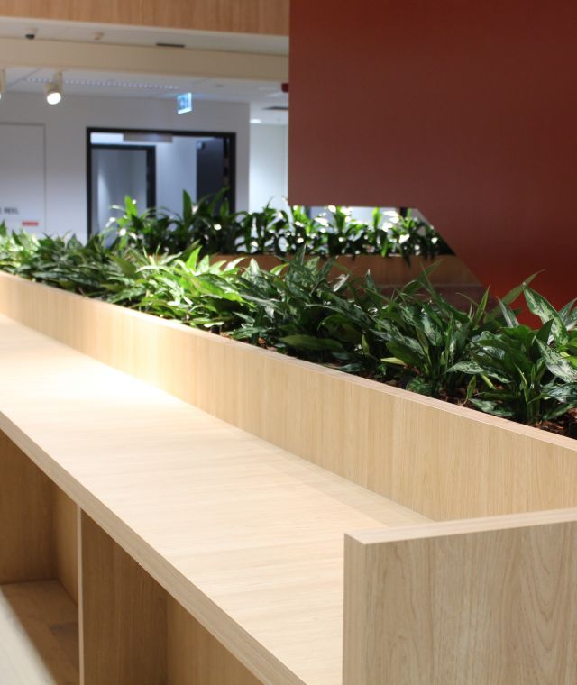Bench Joinery Planter