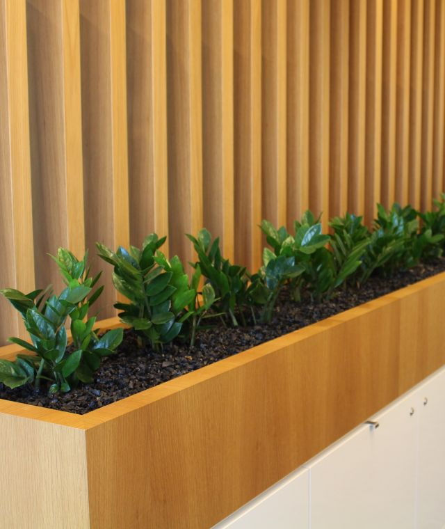 Reception Planter Joinery