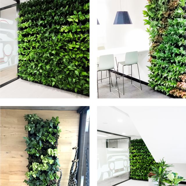 Frenchams Green Wall Brochure