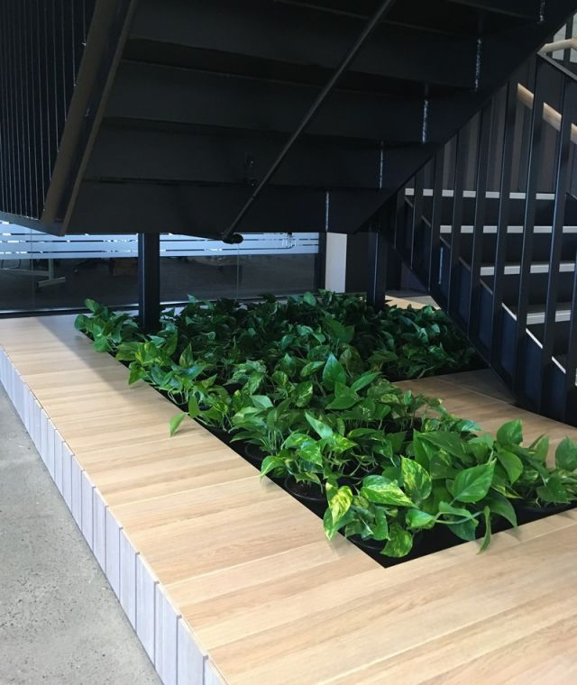 Understair Joinery Planter