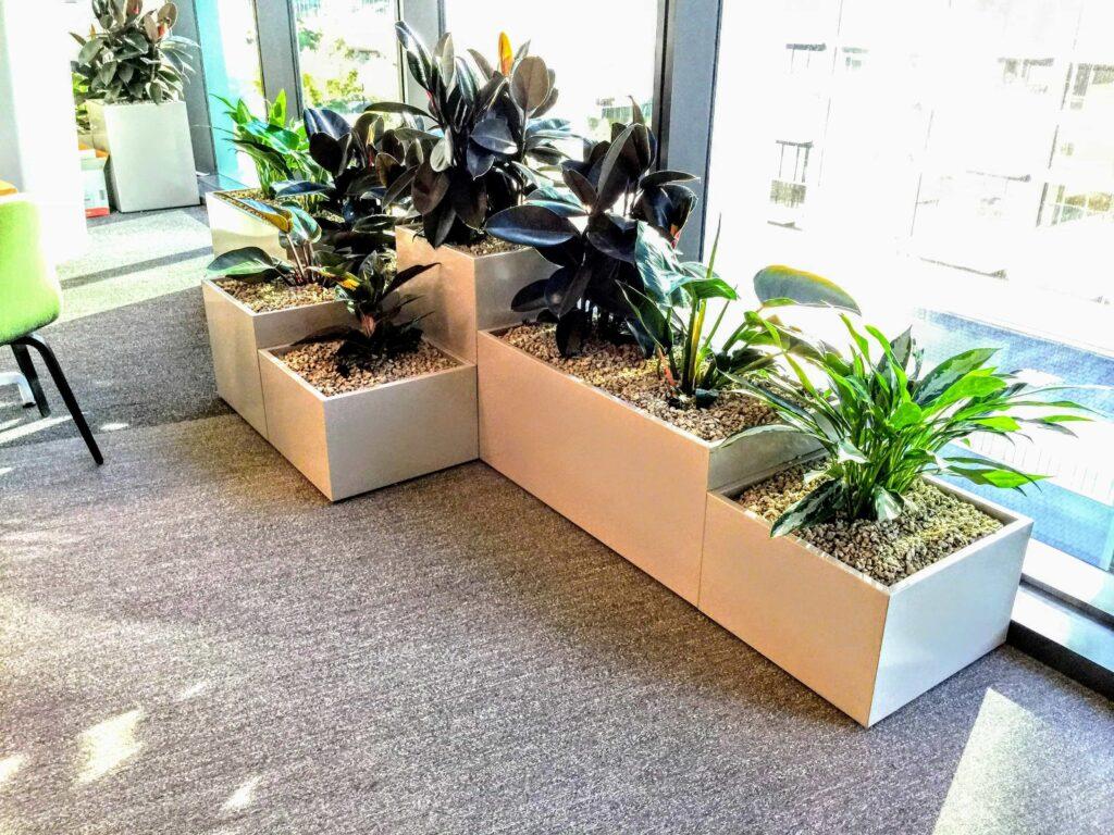 artificial plant hire melbourne