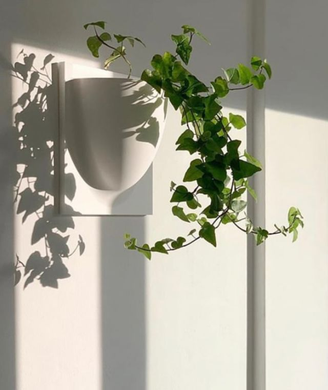 FRENCHAMS WALL PLANTER